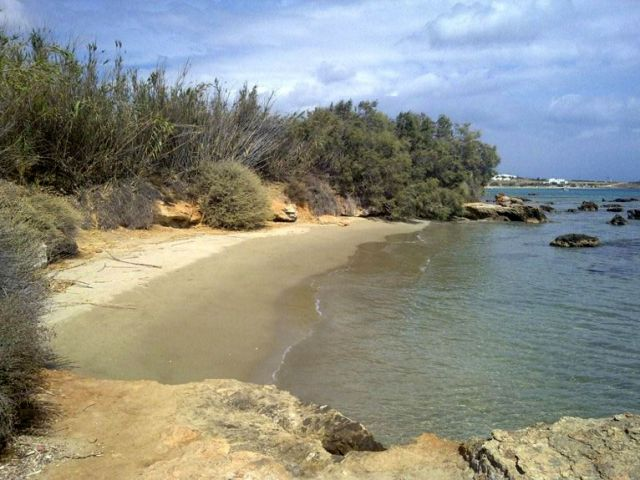A wonderful beach just 40 meters from the villa